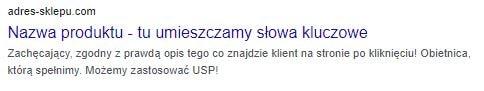 tytuł title i opis strony description w Google